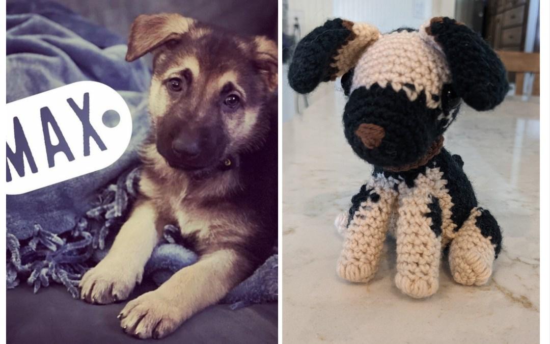 Custom Crochet Pets